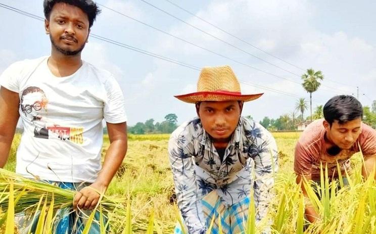 রাঙ্গুনিয়ায় কৃষকের পাকা ধান কেটে ঘরে পৌঁছে দিলেন পদুয়া ইউনিয়ন ছাত্রলীগ